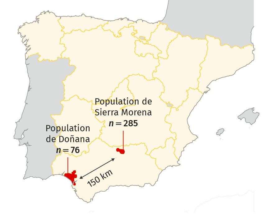 Localisation des populations