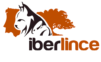 Iberline