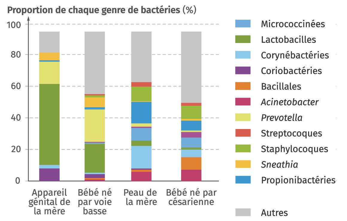 Comparaison des microbiote maternels et de l'enfant