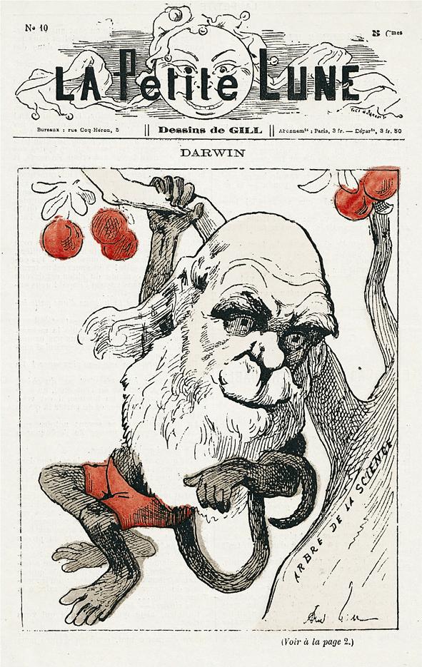 Caricature de Charles Darwin dans le journal satirique La Petite Lune, 1878.