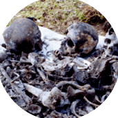 1937-1938 : la Grande Terreur en URSS