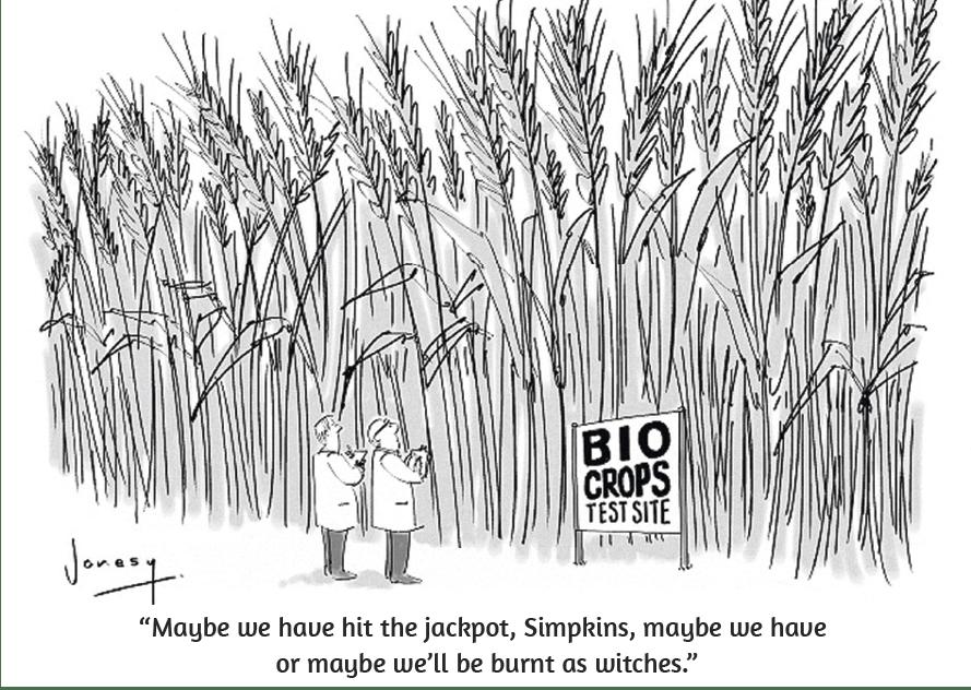 Cartoon by Jonesy, 2013.