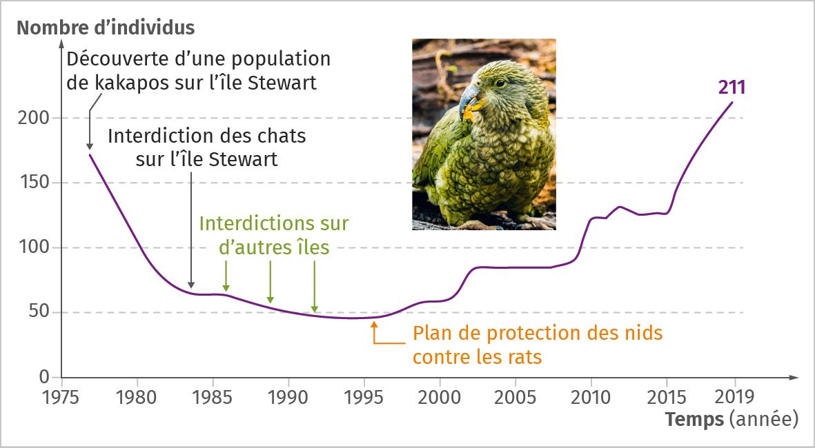 population de kakapos