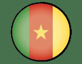 Flag of Cameroun