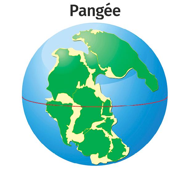 Pangée