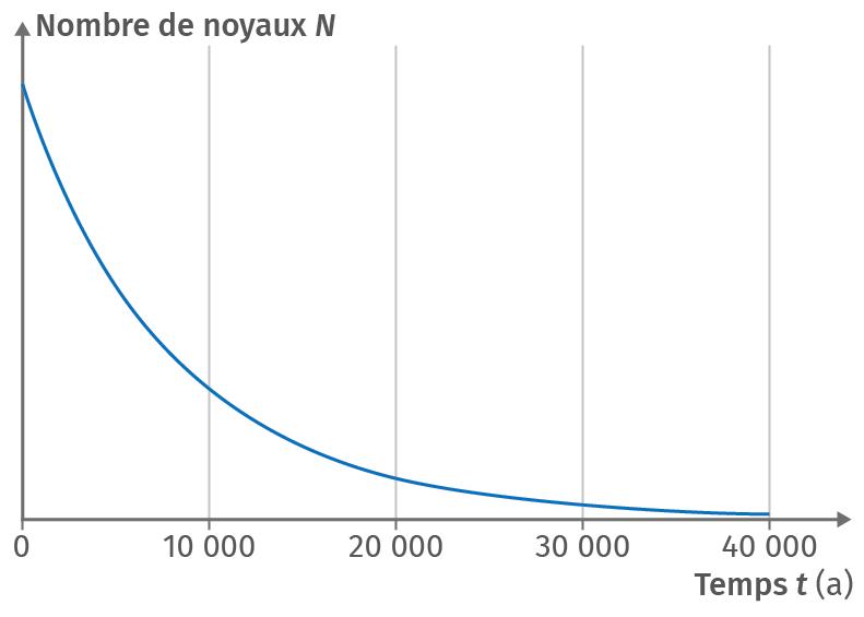 Évolution du nombre de noyaux au cours du temps