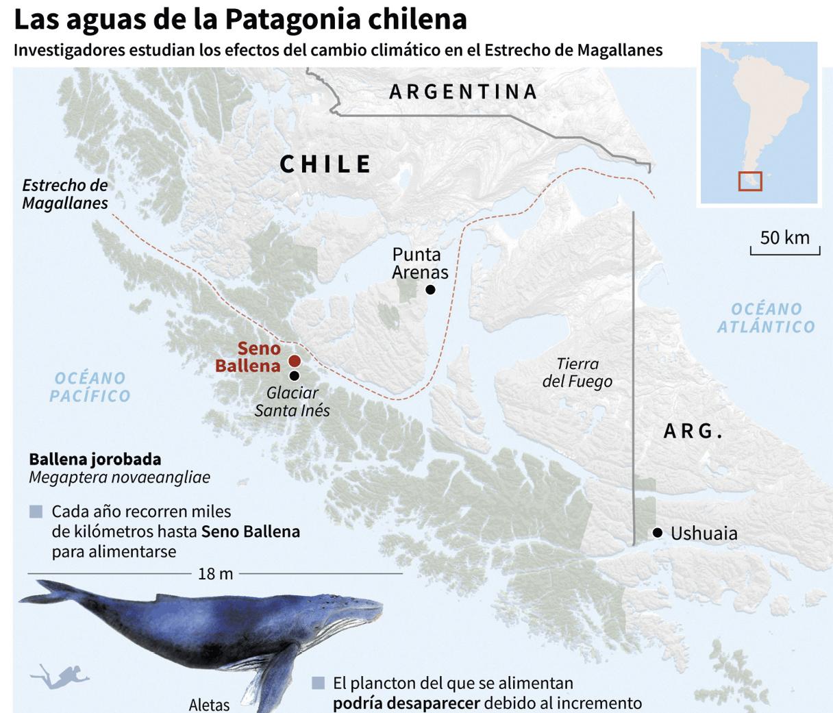 Mapa de la Patagonia chilena donde se señala la ubicación de Seno Ballena, Centro IDEAL/AFP, 2018