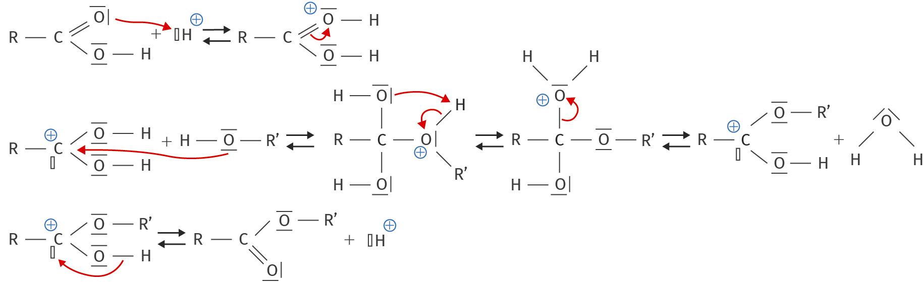 Mécanisme réactionnel d'une estérification