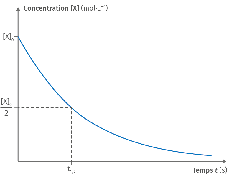 Courbe représentative de [X]=f(t)