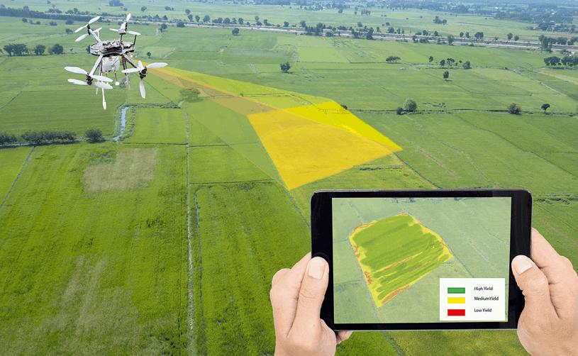 IA et agriculture