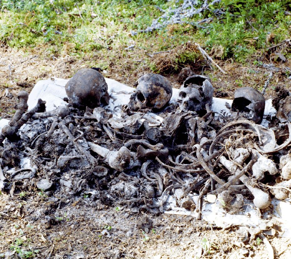 Découverte de fosses communes à Sandarmokh, 6 août 1997, photographie anonyme.