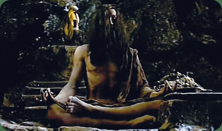 Samsara, extrait 1