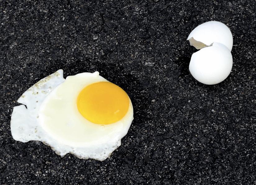 egg-pavement