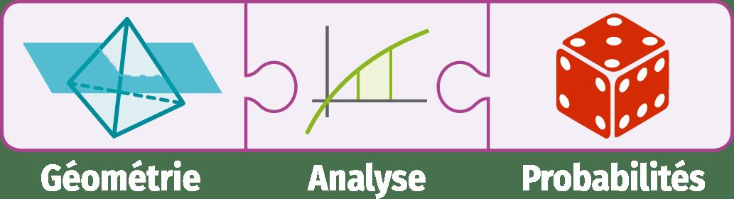 Exercices Transversaux Mathématiques Spécialité