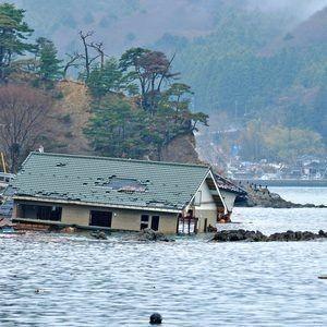 <stamp theme='his-green2'>Doc. 1</stamp> Le tsunami du 11 mars 2011 au Japon