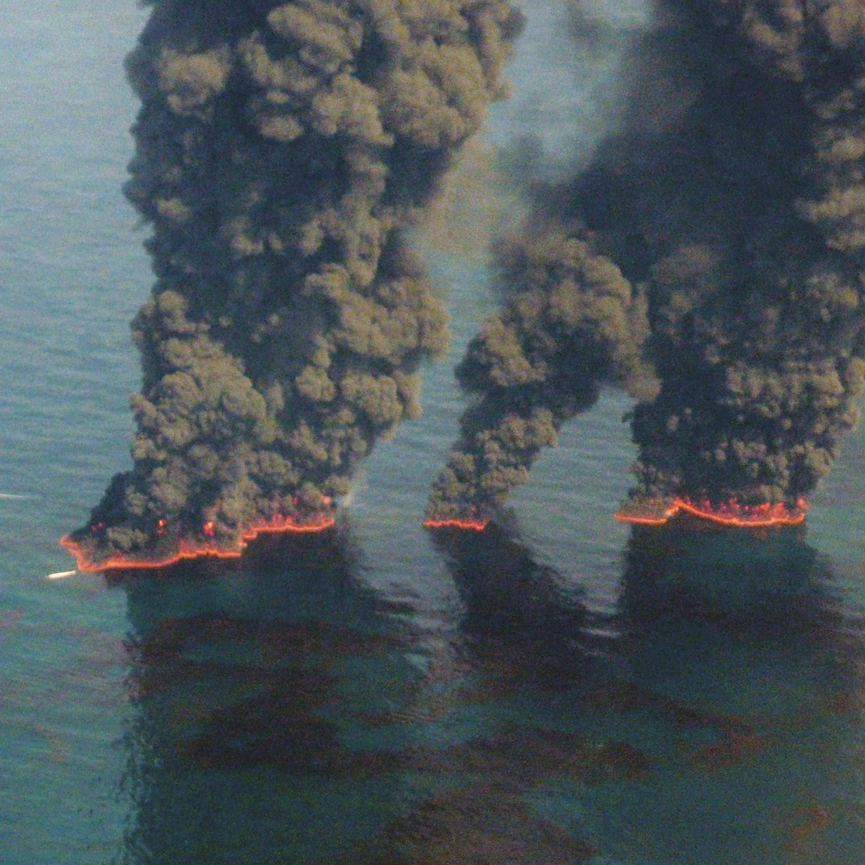 <stamp theme='his-green2'>Doc. 1</stamp> Marée noire dans le golfe du Mexique (États-Unis), en 2010