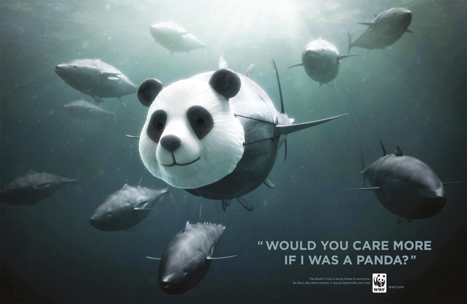 campagne de communication pour la protection du thon rouge, WWF