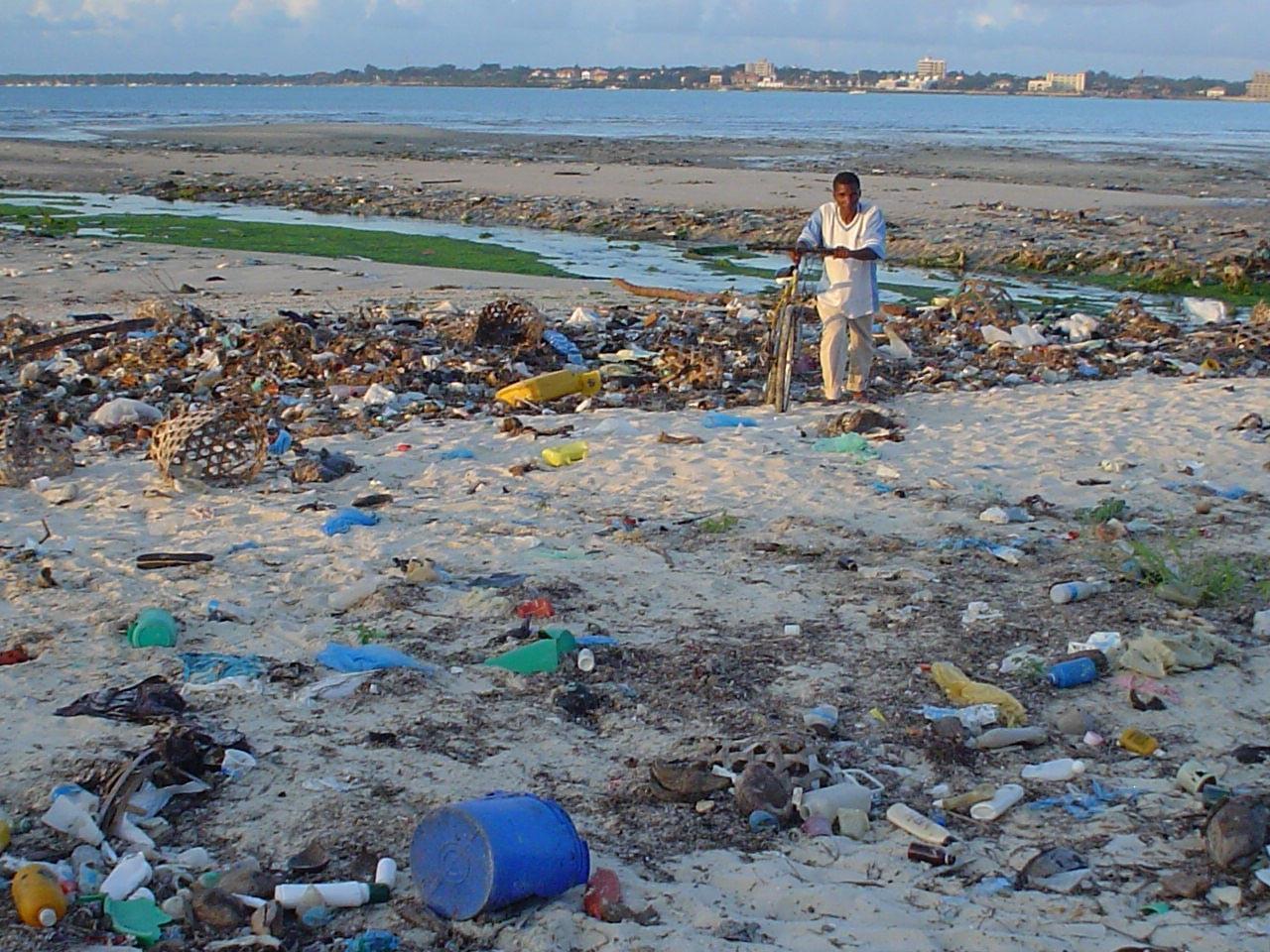 Une plage recouverte de déchets