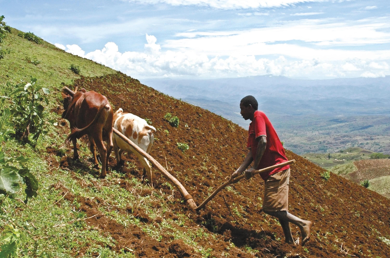 <stamp theme='his-green2'>Doc. 4</stamp> Un paysan cultive son champ dans les hautes terres éthiopiennes