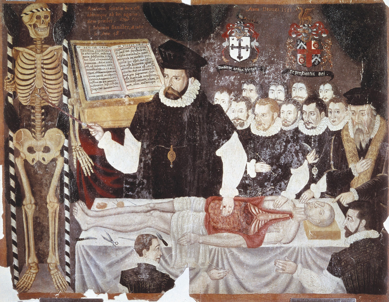<stamp theme='his-green2'>Doc. 3</stamp> Un cours de médecine au XVIᵉ siècle