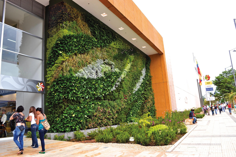 Mur végétal pour une meilleure isolation et économiser de l'énergie, en Équateur