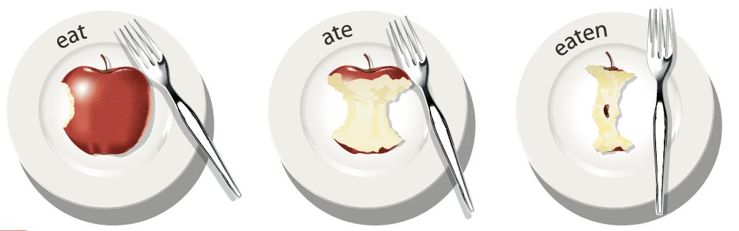 infography irregular verb : eat ate eaten