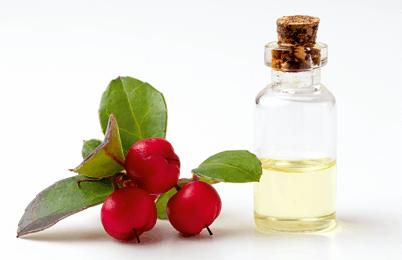 Image d'une huile de gaulthérie