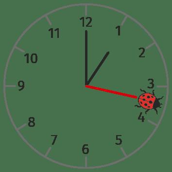 Horloge sur laquelle est posée une coccinelle