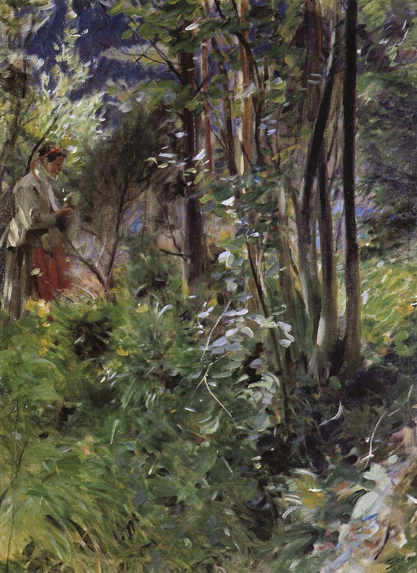 Ex. 5 Une journée en forêt