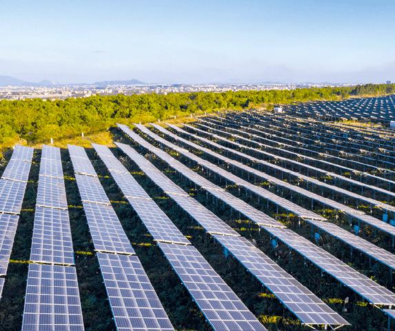 Ingénieur/e en énergie solaire - Champ de panneaux photovoltaïques