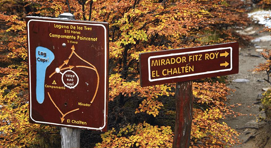 Mirador Chaltén