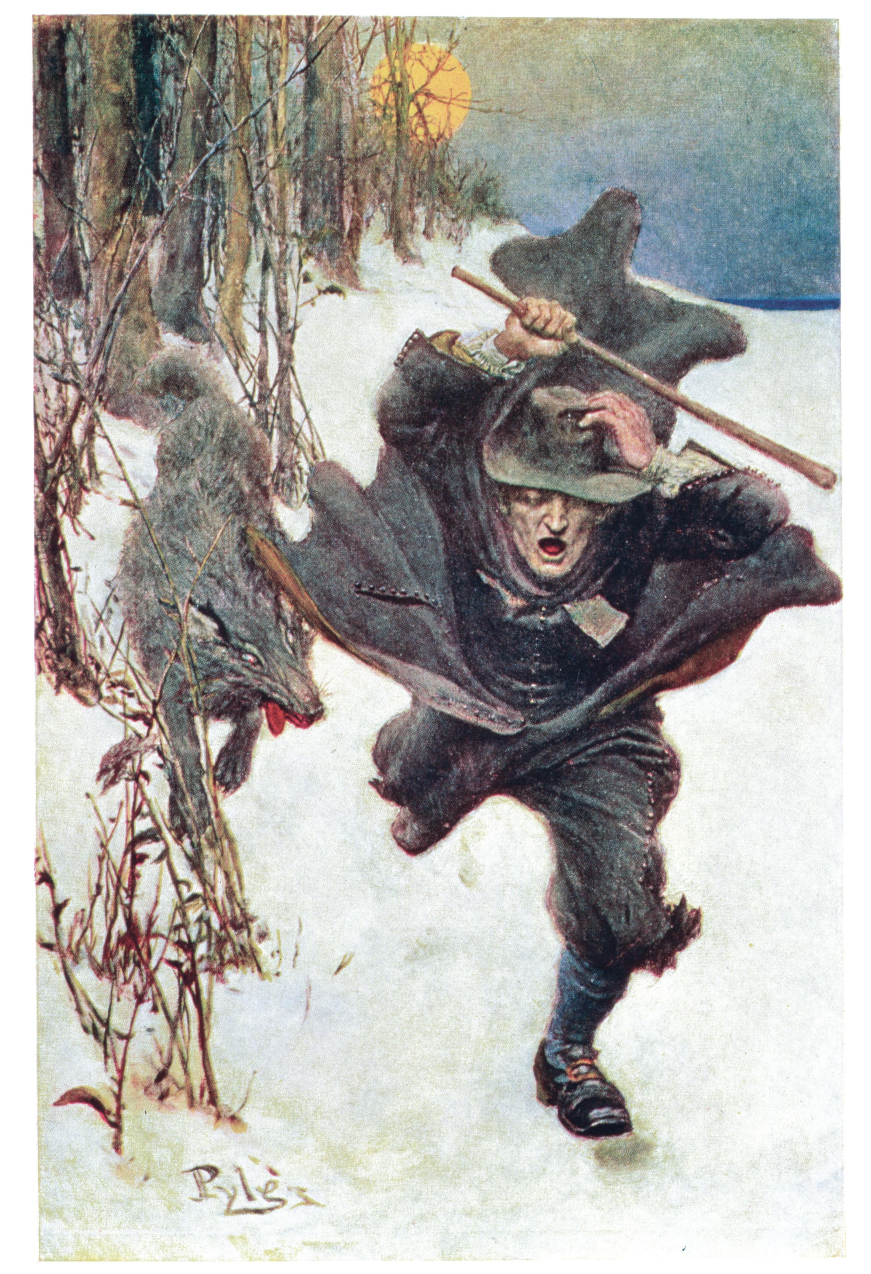 Le loup de Salem