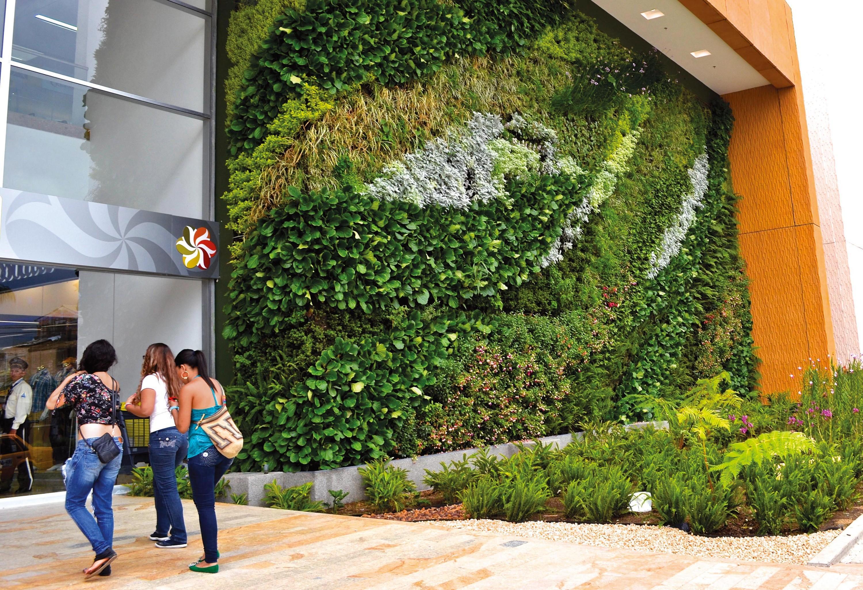 Un mur végétalisé en Équateur