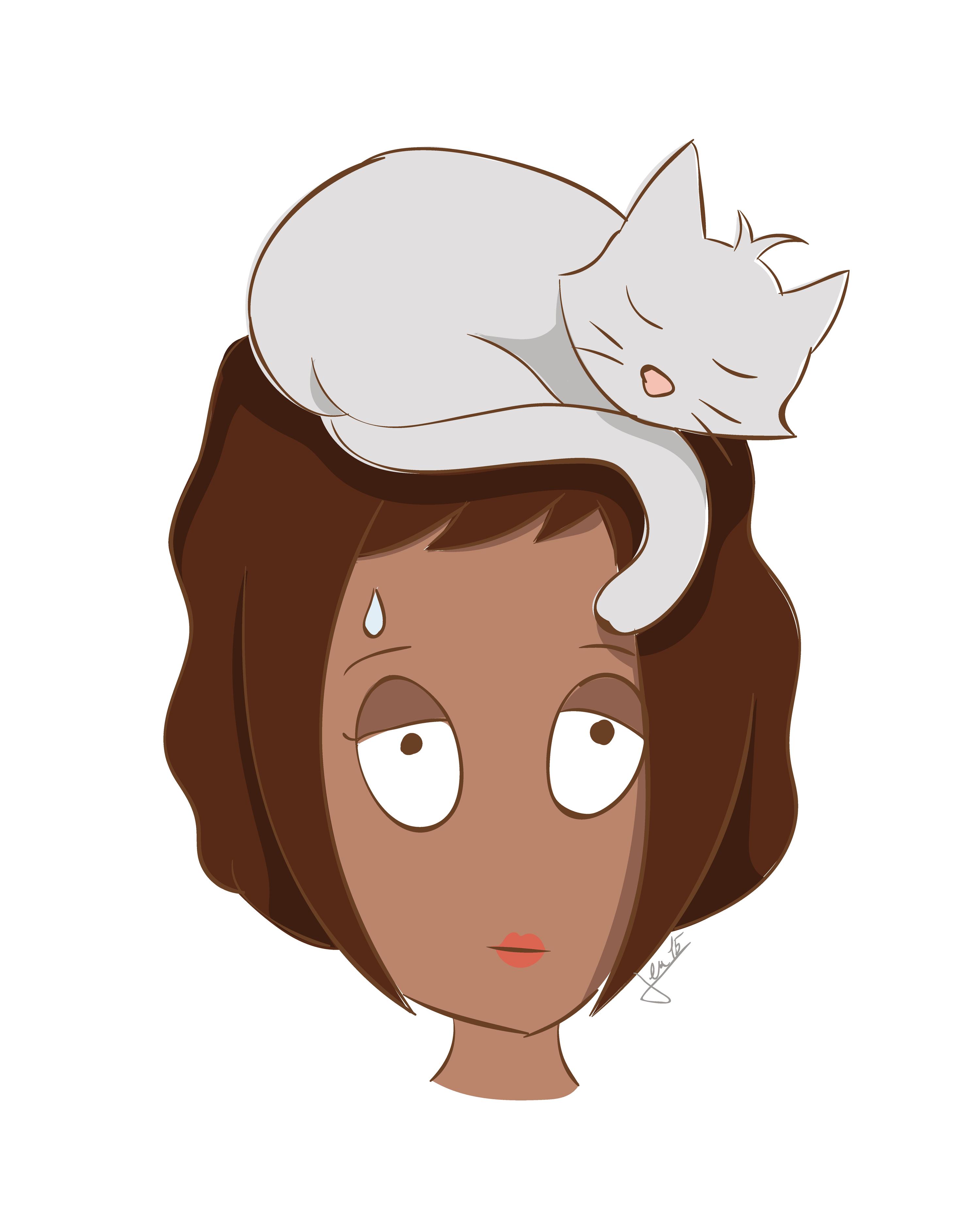 Ex. 1 Un chat prudent