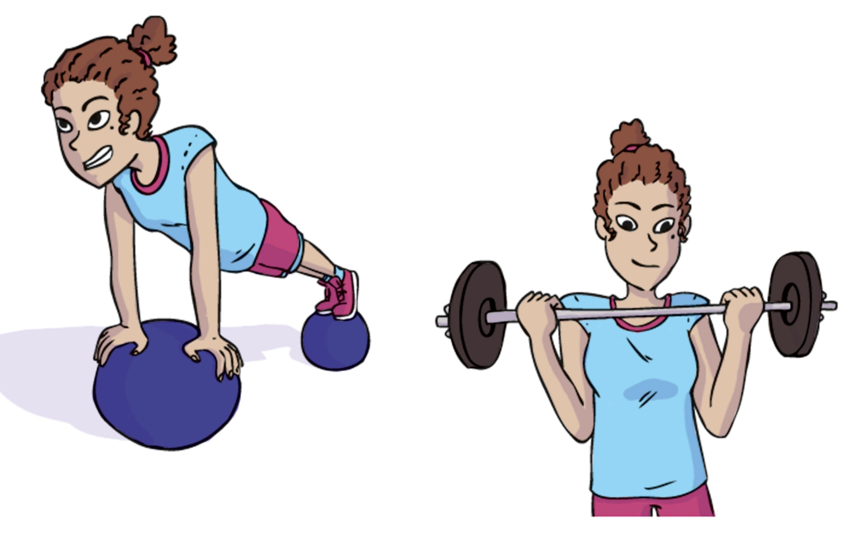 <stamp theme='svt-green1'>Doc. 1</stamp> Un programme d'entrainement équilibré pour se muscler.