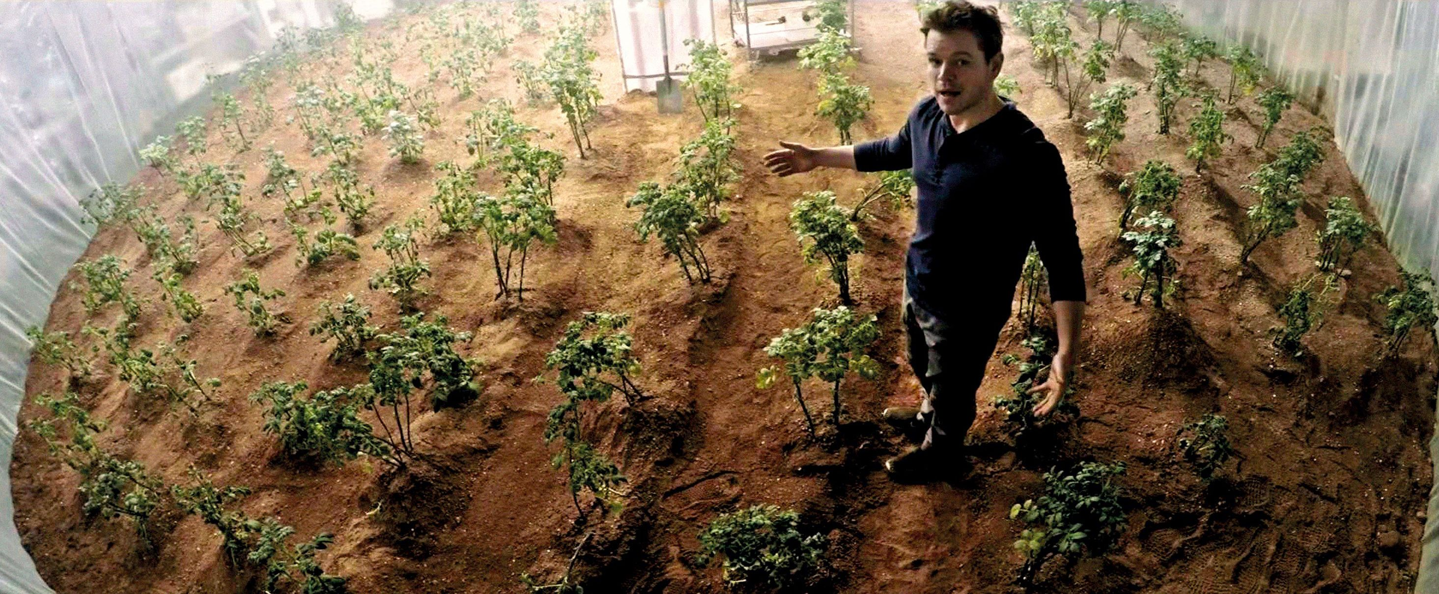 <stamp theme='svt-green1'>Doc. 1</stamp> La serre de Mark Watney dans le film Seul sur Mars (2015).