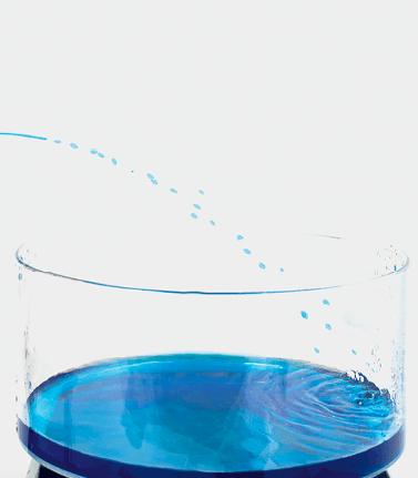Photographie de l'expérience - Zoom sur le cristallisoir