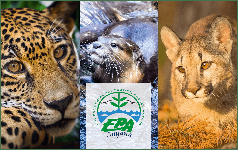 Environment Protection Agency of Guyana