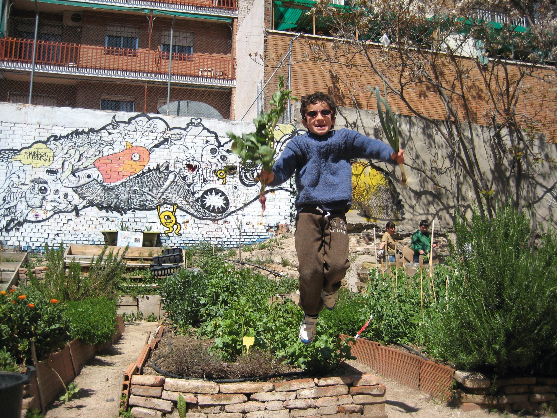 Plantado en a ciudad