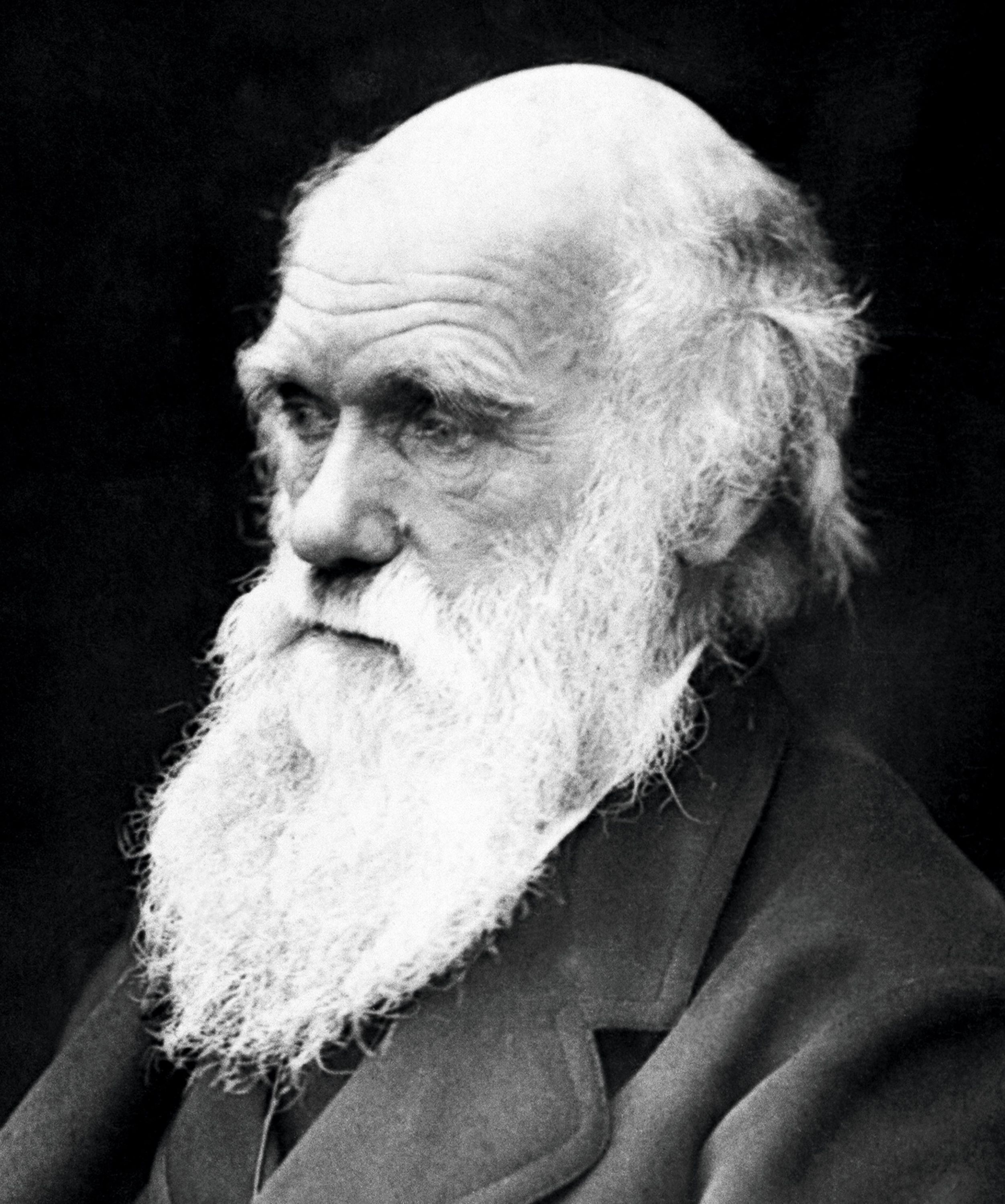 <stamp theme='svt-green1'>Doc. 5</stamp> Le principe de la sélection naturelle énoncé par Darwin.
