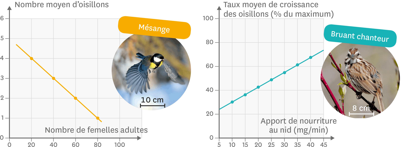 <stamp theme='svt-green1'>Doc. 5</stamp> L'influence de la disponibilité en nourriture sur la croissance des oisillons.