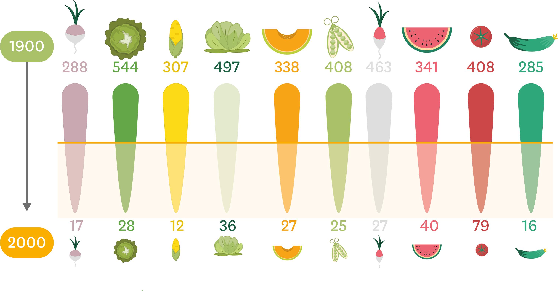 <stamp theme='svt-green1'>Doc. 1</stamp> Le nombre de variétés de fruits et légumes en 1900 et 2000.