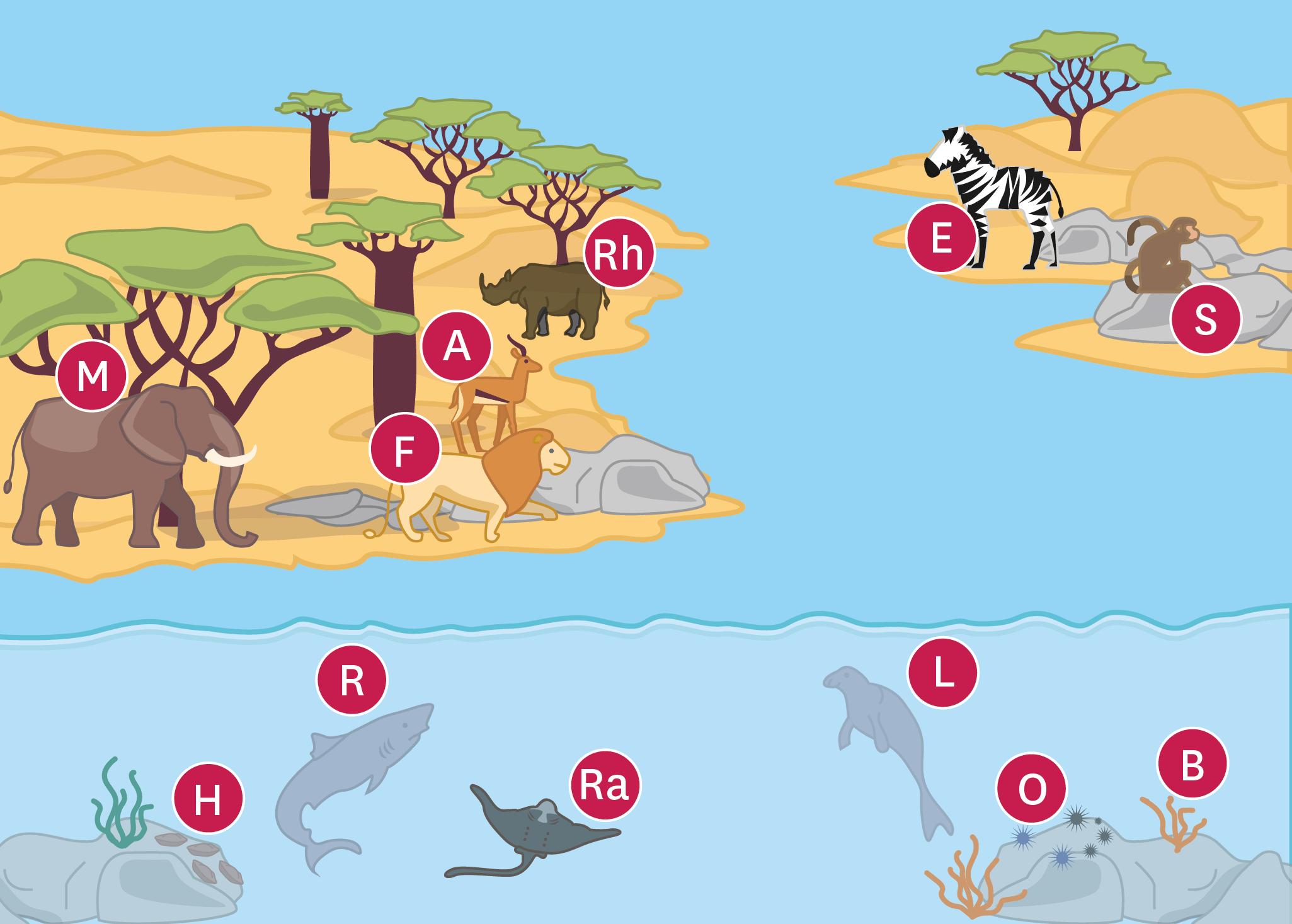 <stamp theme='svt-green1'>Doc. 2</stamp> Une reconstitution du paysage de l'Ouest de la France au Miocène (-23 à -5 millions d'années).