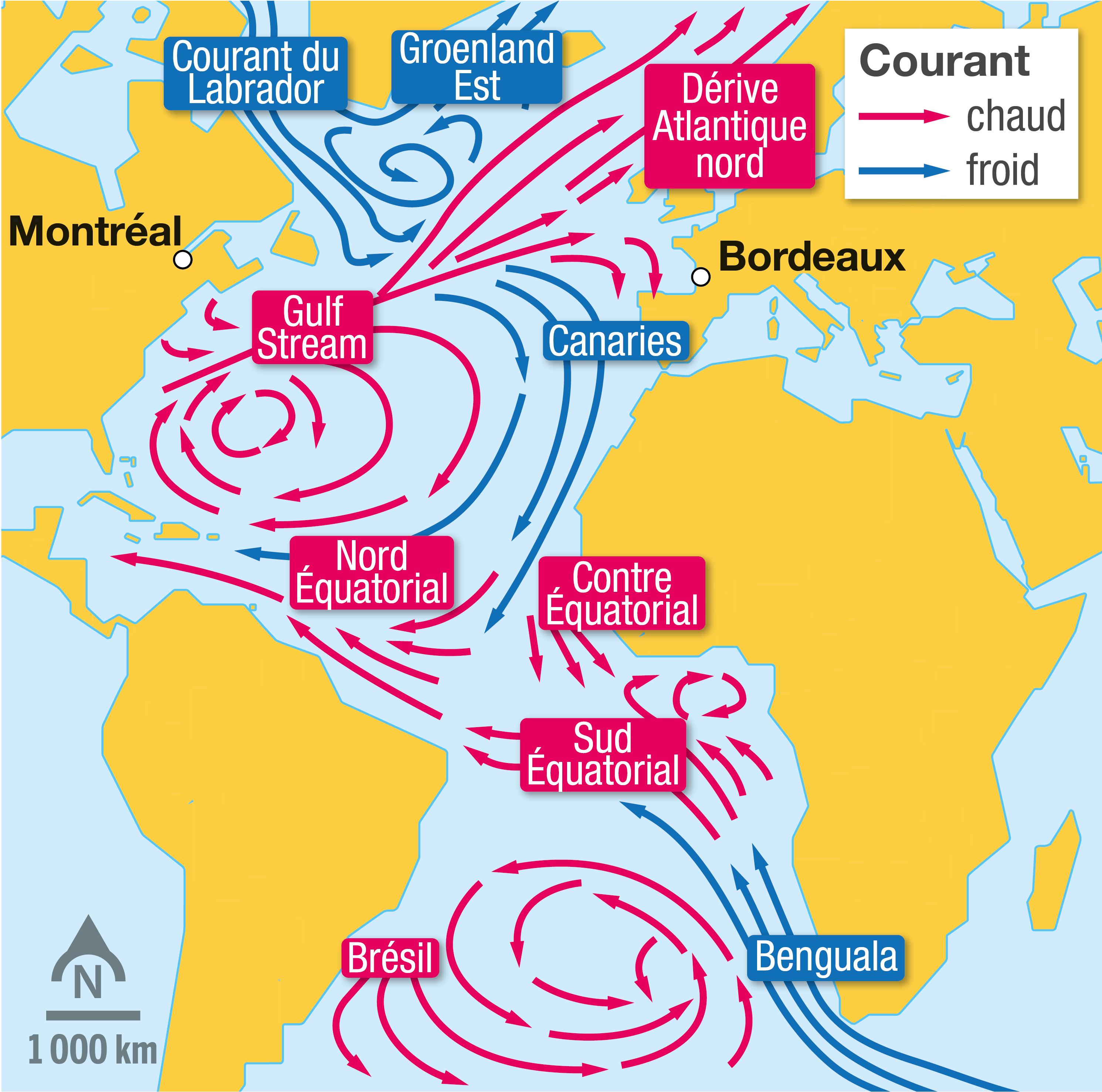 <stamp theme='svt-green1'>Doc. 4</stamp> Les courants océaniques en Atlantique.