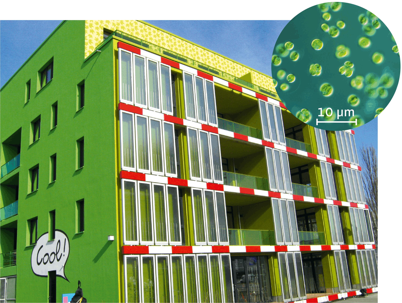 <stamp theme='svt-green1'>Doc. 1</stamp> La maison aux algues à Hambourg, Allemagne.