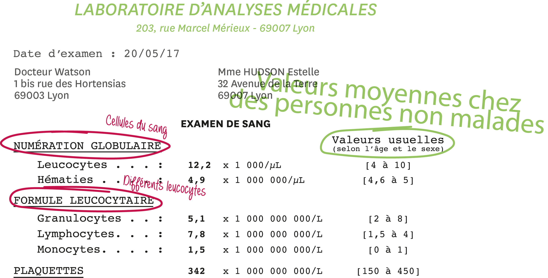 <stamp theme='svt-green1'>Doc. 2</stamp> Les analyses de sang d'Estelle pendant sa maladie.