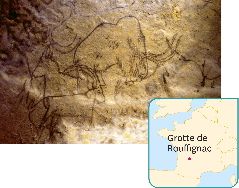 <stamp theme='svt-green1'>Doc. 3</stamp> Des dessins réalisés il y a 13 000 ans dans les grotte des 100 mammouths à Rouffignac (Périgord).