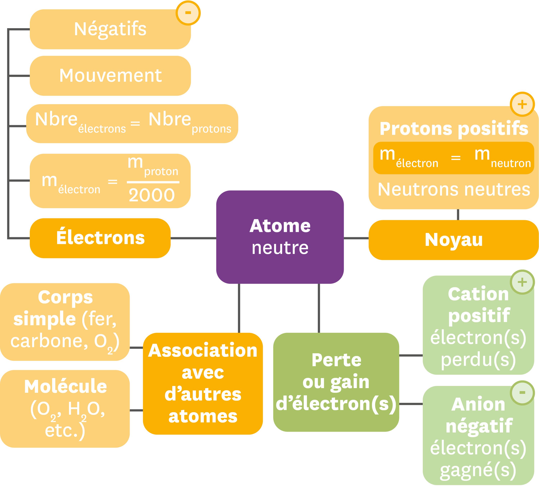 Exemple de carte mentale résumant les différentes entités chimiques à l'echelle microscopique.