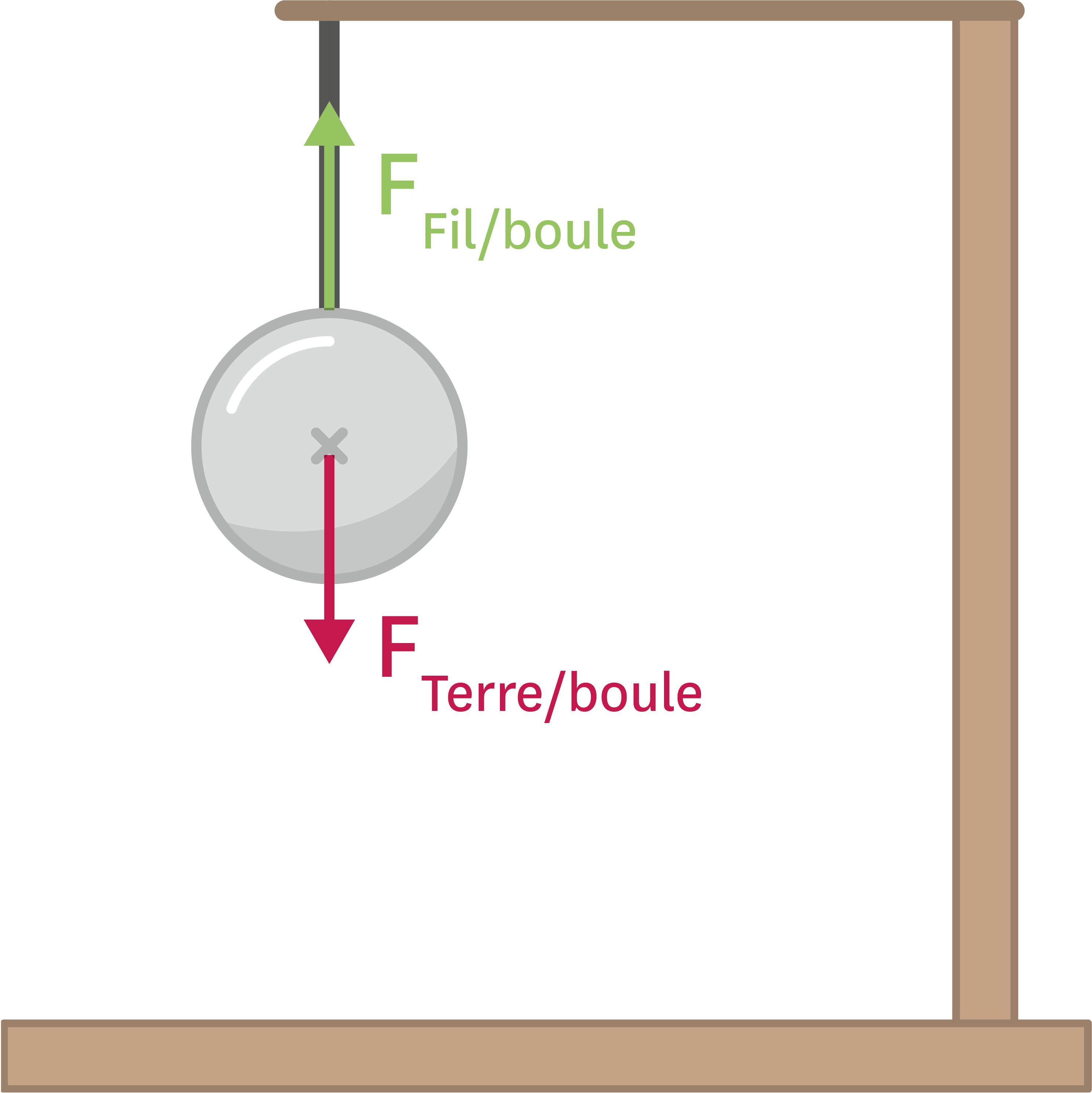 <stamp theme='pc-green1'>Doc. 2</stamp> Exemple d'équilibre des forces : forces subies par une boule suspendue à un fil.