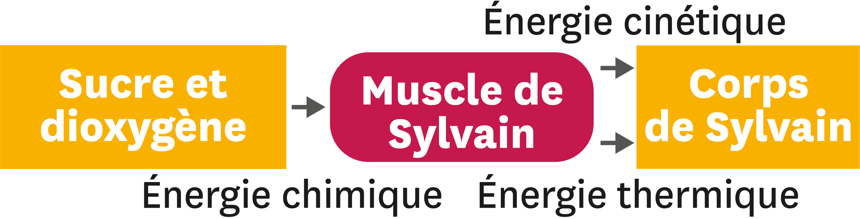 <stamp theme='pc-green1'>Doc. 2</stamp> Energie.